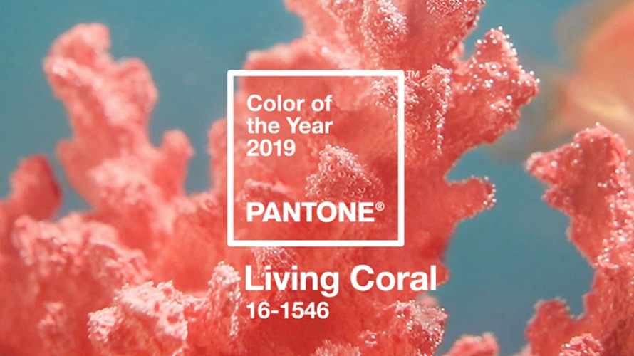 """Living Coral"": the colour for 2019 is finally revealed by Pantone!"