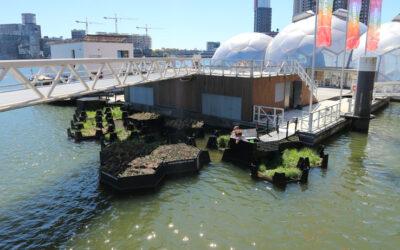 """""""Isla reciclada"""": un proyecto hecho de desperdicios plásticos en Roterdam"""